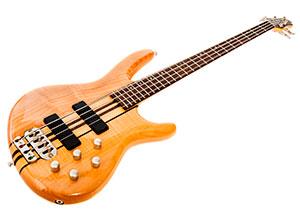 E-Bass oder Bass Gitarre
