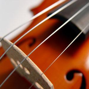 Violine Geige